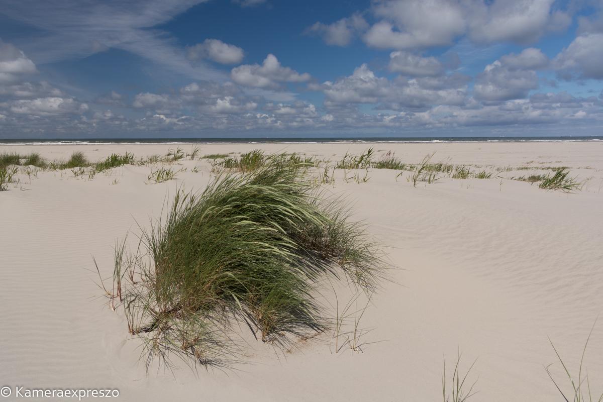 rob wander fotografie Schiermonnikoog duinen kameraexpreszo.nl keznl