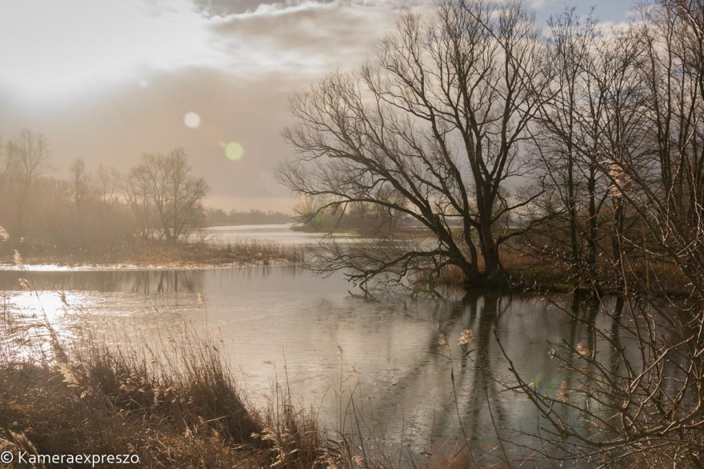 Rob Wander Fotografie kameraexpreszo.nl Biesbosch Werkendam Haven landschap Winter keznl marco de pauw